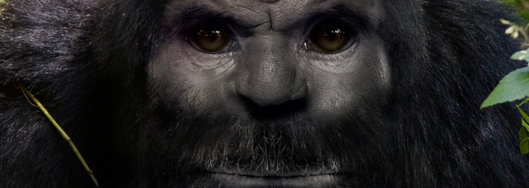 Image: www.discovery.com/tv-shows/russian-yeti
